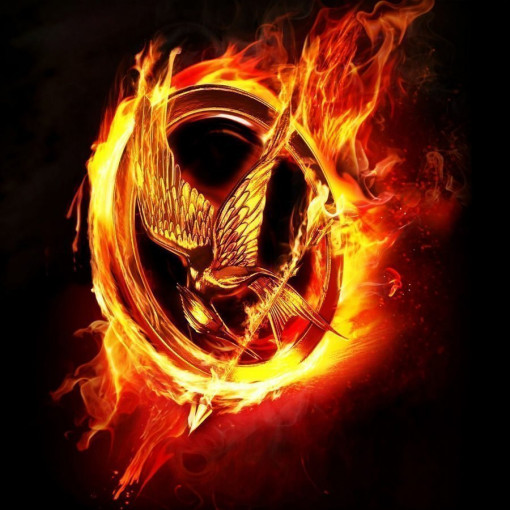 The Hunger Games Musical